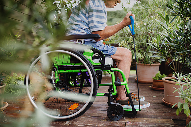 ndis services
